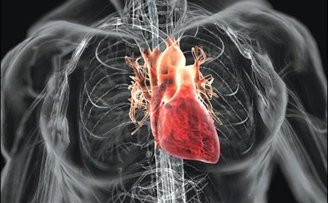 bệnh tim mạch nên ăn gì