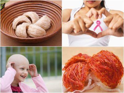 ung thư có nên ăn yến sào 1
